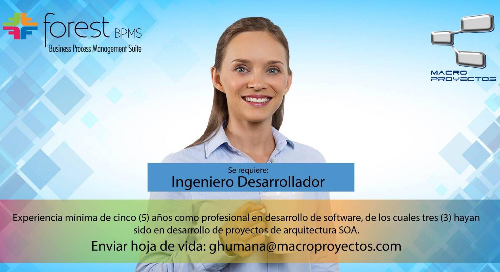 INGENIERO DESARROLLADOR CON SOA